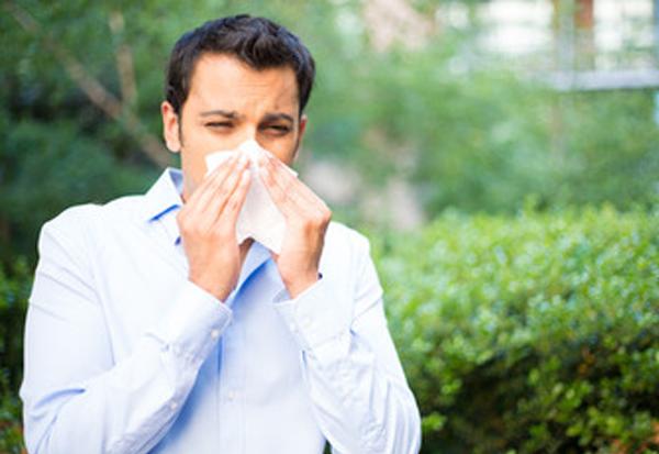 Allergieën – Herkennen En Overwinnen Door Wayne Topping – Montfoort